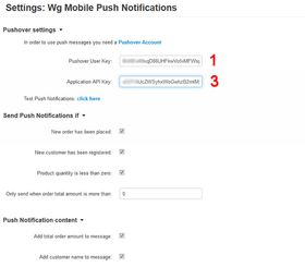 Mobile Push Notifications v4